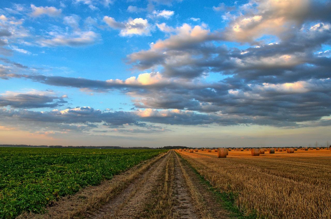 Datu atlase lauksaimniecības uzņēmumiem