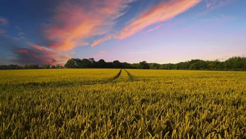 Latvijas vērtīgākās zemnieku saimniecības