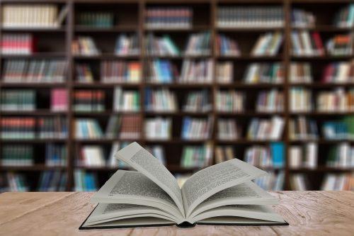 Grāmatizdevēji Latvijā: peļņa, apgrozījums un samaksātie nodokļi